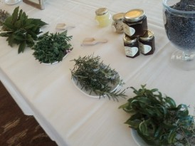Aromatic herb display